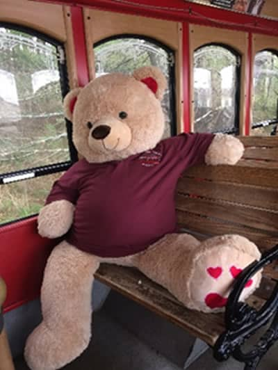 Trolley Ambassador